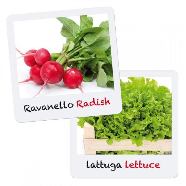 Set creativ pentru copii Gioca Green plantare si crestere Salata Ridiche Quercetti 0